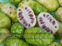 noni beneficios